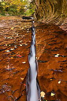 """Water flows through a narrow crevice on the hike to """"The Subway"""", Zion National Park, Utah, October 2007"""
