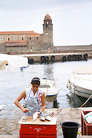 The church Eglise Notre Dame des Anges, our lady of the angels. With its emblematic church tower. A young woman selling fish, de-scaling the fish. Collioure. Roussillon. France. Europe.