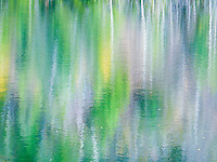 """""""POND PALETTE""""<br /> <br /> Aspen and evergreen are reflected in a mountain pond water creating an impressionist work of art. Nature uses water as her painter's palette to create surreal art. ORIGINAL 24 X 36 GALLERY WRAPPED CANVAS SIGNED BY THE ARTIST $2,500. CONTACT FOR AVAILABILITY."""