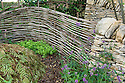 """Dry stone wall and woven hazel hurdle fence, Guy Petheram and Matthew Allan's """"Coppice"""" garden, RHS Hampton Court Flower Show 2009. Plants include betony (Stachys officinalis) and sweet woodruff (Galium odoratum)."""