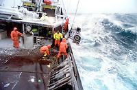 "The fishing vessel ""Reliance"" fishes for opilio crab in the Bering Sea during a storm in February of 1994.  The Bering Sea is known for having the worst storms in the world.  In this photo a deckhand has just thrown the ""hook"" at the buoy attached by a line to the crab pot sitting on the ocean floor.  He will then pull it aboard using hydrolics.  Crab fishing in the Bering Sea is considered to be one of the most dangerous jobs in the world.  This fishery is managed by the Alaska Department of Fish and Game and is a sustainable fishery.  The Discovery Channel produced a TV series called ""The Deadliest Catch"" which popularized this fishery."