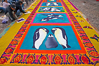 Antigua, Guatemala. Finalizing a border of stenciled butterflies on an alfombra (carpet) of colored sawdust depicting environmental themes decorating  the street in front of La Merced Church in advance of the passage of a children's procession during Holy Week, La Semana Santa.  The alfombra will only be finished an hour or two before the procession walks over it, after which it will be swept away by municipal street cleaners.