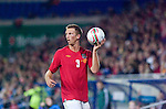 Wales Danny Collins during the Euro 2010 qualifying match between Wales and Bulgaria at Cardiff City Stadium..