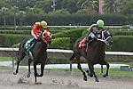 Scenes from Calder Race Course, Miami Gardens, FL 07-06-13