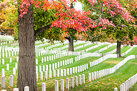 The leaves of turning trees add peak fall color to the grounds of Arlington National Cemetery in Arlington, Virginia.