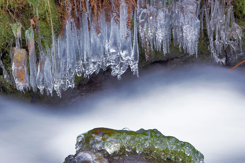 Ice on edge of Wahkeena Creek. Columbia River Gorge National Scenic Area. Oregon