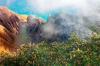 Nualolo Valley from end of Awaawapuhi Trail. Koke'e State Park. Kauai, Hawaii