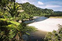 Brown Heaphy River on Heaphy Track, Kahurangi National Park, West Coast, New Zealand