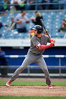 Lehigh Valley IronPigs pinch hitter Mitch Walding (10) at bat during a game against the Syracuse Chiefs on May 20, 2018 at NBT Bank Stadium in Syracuse, New York.  Lehigh Valley defeated Syracuse 5-2.  (Mike Janes/Four Seam Images)