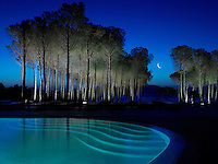 A dramatic and unearthly atmosphere is created at this outdoor swimming pool with underwater lighting and spotlights on the adjacent grove of trees