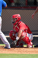 Philadelphia Phillies catcher Rodolfo Duran (10) during an Extended Spring Training game against the Toronto Blue Jays on June 12, 2021 at the Carpenter Complex in Clearwater, Florida. (Mike Janes/Four Seam Images)