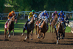 """ARCADIA, CA. SEPTEMBER 29: The start of the Rodeo Drive Stakes (Grade l) """"Win and You're in Breeders Cup Juvenile Fillies Division"""" on September 29, 2018, at Santa Anita Park in Arcadia, CA. (Photo by Casey Phillips/Eclipse Sportswire/CSM)"""