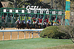 HOT SPRINGS, AR - MARCH 18: The start of the running of the Azeri Stakes at Oaklawn Park on March 18, 2017 in Hot Springs, Arkansas. (Photo by Justin Manning/Eclipse Sportswire/Getty Images)