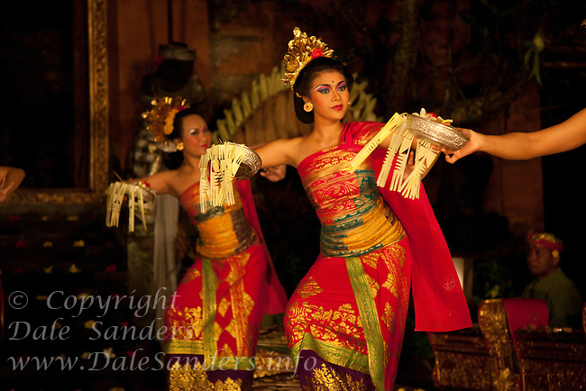 Balinese Dancers in elaborate costumes perform Legong Dance at Puri Saren Ubud ( Ubud Palace ) in Bali, Indonesia.  No Releases