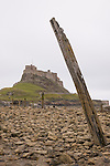 Driftwood on the beach of Holy Island near Lindisfarne in England. Holy Island is a tidal island that is a located in Northumberland.