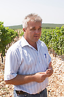 Pero Vucic viticulturist and vineyard manager in the vineyard. Lime stone limestone based very white soil, very much stones pebbles rocks. One of their best vineyards with very poor soil on a hilltop mountain near Citluk and Zitomislic. Vinarija Citluk winery in Citluk near Mostar, part of Hercegovina Vino, Mostar. Federation Bosne i Hercegovine. Bosnia Herzegovina, Europe.