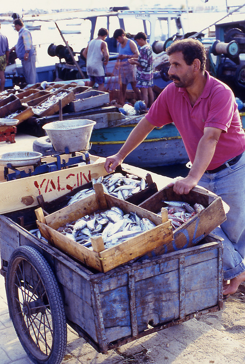 TUR, Tuerkei, Tuerkische Aegaeis, Marmaris, Bodrum, Fischverkaeufer, Typisches Bild im Hafen von Bodrum, ein Fischhaendler der seinen Fangfrischen Fisch zum Kauf anpreist.<br /> [Fuer die Nutzung gelten die jeweils gueltigen Allgemeinen Liefer-und Geschaeftsbedingungen. Nutzung nur gegen Verwendungsmeldung und Nachweis. Download der AGB unter http://www.image-box.com oder werden auf Anfrage zugesendet. Freigabe ist vorher erforderlich. Jede Nutzung des Fotos ist honorarpflichtig gemaess derzeit gueltiger MFM Liste - Kontakt, Uwe Schmid-Fotografie, Duisburg, Tel. (+49).2065.677997, fotofinder@image-box.com, www.image-box.com]
