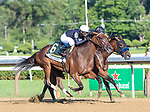 JULY 18, 2020 : Paris Lights, #6 with Tyler Gaffalione aboard, holds off Crystal Ball to win the Grade 1 Coaching Club American Oaks for 3 year old fillies, going 1 1/8 mile, at Saratoga Race Course. Rob Simmons/Eclipse Sportswire/CSM