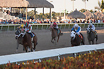 Ribo Bobo outsprints 8 rivals in the Florida Sunshine Millions Sprint at Gulfstream Park, Hallandale Beach Florida. 01-18-2014