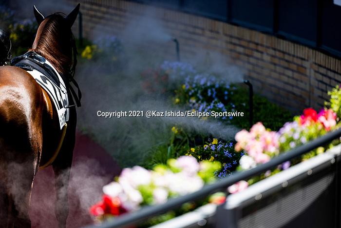 TOYOAKE,JAPAN-JUN 5: A horse gets splashed at the padock at Chukyo Racecourse on June 5,2021 in Toyoake,Aichi,Japan. Kaz Ishida/Eclipse Sportswire/CSM