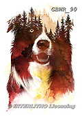 Simon, REALISTIC ANIMALS, REALISTISCHE TIERE, ANIMALES REALISTICOS, paintings+++++RobertF_OneNightInTheForest,GBWR90,#a#, EVERYDAY