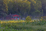Early morning mist rises over a vacationer's cabin in northern Wisconsin.