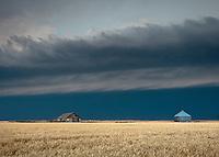 Thunderstorm Shelf Cloud Above Farm House & Grain Storage in a Yellow Wheat Field near Goodland, KS, June 15, 2012