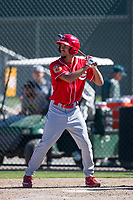 Cincinnati Reds outfielder Nathaniel Scantlin (28) at bat during an Instructional League game against the Oakland Athletics on September 29, 2017 at Lew Wolff Training Complex in Mesa, Arizona. (Zachary Lucy/Four Seam Images)