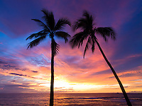 Two palm trees silhouetted against a brilliant sunset, Honi's Beach, Kailua-Kona, Big Island.
