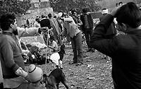 09.2008 Delhi (Haryana)<br /> <br /> Muslims buying mutton for Eid.<br /> <br /> musulmans achetant des moutons pour l'Aid.