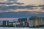 Tourist helicopters flying over hotels, Honolulu, Oahu, Hawaii