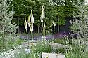 Daily Telegraph Garden, designed by Ulf Nordfjell, RHS Chelsea Flower Show 2009. Plants include Campanula rotundifolia (Harebell), Cornus kousa var. chinensis (Chinese dogwood), Eremurus 'Joanna' (Foxtail lily), Pyrus salicifolia 'Pendula' (Pendulous willow-leaved pear), and Salvia nemorosa 'Caradonna'.