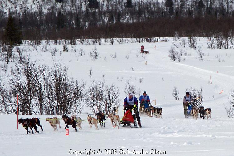 Sykkel og ski pa? GunnarbuNordic championship in dog sled racing at Venabygdsfjell, Norway April 6th 2008. Agneta Hogberg, Steinar Rye-Stang, Erik Oksnevad and Bjornar Nikolaisen in full speed.Winner was 117 Agneta Hogberg, Sweeden