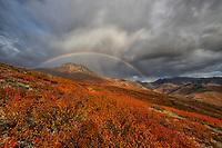 Yukon - Land of the Midnight Sun