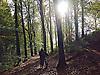 Cyclist walking through the autumn woods near Llanafan, Ceredigion, West Wales.<br /> <br /> Stock Photo by Paddy Bergin