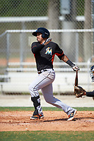 Miami Marlins Rony Cabrera (60) hits a home run during a minor league Spring Training intrasquad game on March 31, 2016 at Roger Dean Sports Complex in Jupiter, Florida.  (Mike Janes/Four Seam Images)