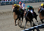 09 July 30: Miguel Mena rides Balktalk (no. 4) to victory in the 95th running of the grade 2 Sanford Stakes for two year olds at Saratoga Race Track in Saratoga Springs, New York.