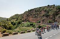 complete peloton ride-by<br /> <br /> Stage 8: Valls to Igualada (167km)<br /> La Vuelta 2019<br /> <br /> ©kramon