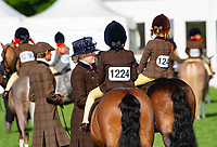 Judging starts in the equestrian classes on the first day of the Royal Three Counties Show, Malvern, Worcestershire.