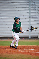 Dartmouth Big Green designated hitter Hayden Rappoport (20) at bat during a game against the Southern Maine Huskies on March 23, 2017 at Lake Myrtle Park in Auburndale, Florida.  Dartmouth defeated Southern Maine 9-1.  (Mike Janes/Four Seam Images)