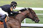 Concept with Oriana Rossi up in the 1st race at Keeneland Race Course. 04.08.2011