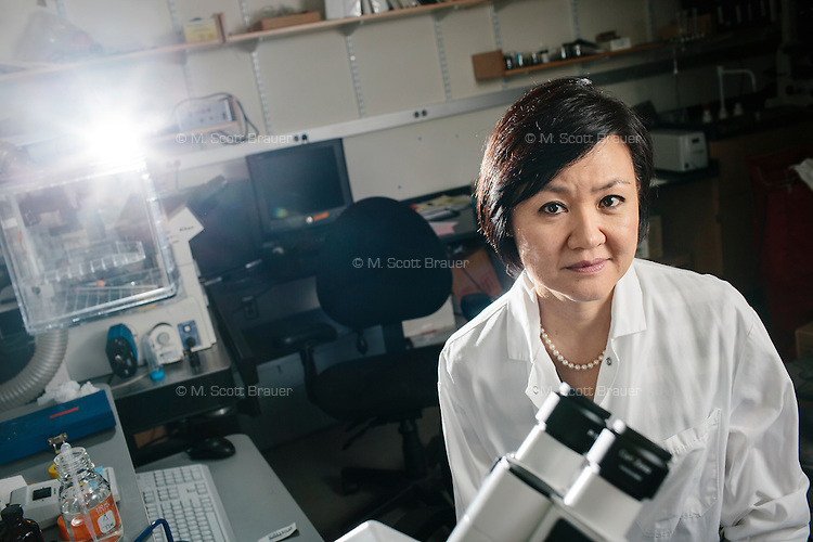 Li-Huei Tsai is the Director of the Picower Institute for Learning and Memory at MIT. She is also the Picower Professor of Neuroscience in MIT's Department of Brain and Cognitive Sciences and is a Senior Associate Member of the Broad Institute. Tsai's lab looks at pathological mechanisms underlying neurological disorders affecting learning and memory, especially in the aging human brain. Major research areas include neuropsychiatric disorders, autism, and Alzheimer's disease.