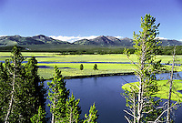 """The Yellowstone river courses slowly through Hayden Valley, in Yellowstone National Park.  This view is from the iconic overlook known as """"Grizzly Overlook"""". A great place to see grizzlies too!"""