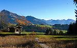 Austria, Tyrol, Reith near Kitzbuehel: autumn mood and Kitzbueheler Horn mountain (1.996 m)