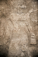 Assyrian relief sculpture panel of a protective spirit with an eagles Head from Nimrud, Iraq. The spirit is holding a symbolic fir cone and is sprinkling holy water from the bucket it is holding.  865-860 B.C North West Palace, Room G, panelled d1. ref: British Museum Assyrian  Archaeological exhibit WA 124576
