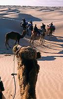 Tunesien, Duenen bei Douz, Touristen beim Kamelreiten