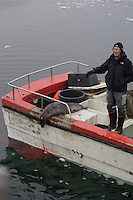 Small Inuit Seal hunter`s boat with Harp seal ( Pagophilus groenlandicus ) on back deck. Icefjord world heritage site  Jakobshavn Glacier, Ilulissat, Disco Bay, Greenland. NO MR