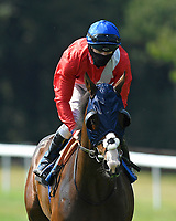 Regal Reality ridden by Richard Kingscote goes down to the start of The AJN Steelstock Sovereign Stakes   during Horse Racing at Salisbury Racecourse on 9th August 2020