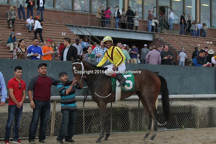 HOT SPRINGS, AR - MARCH 12: Jockey Ricardo Santana Jr. aboard Terra Promessa (5) in the winning circle after winning Honeybee Stakes at Oaklawn Park on March 12, 2016 in Hot Springs, Arkansas. (Photo by Justin Manning)