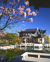 USA, Oregon, Chinese Classical Garden located in Portland.